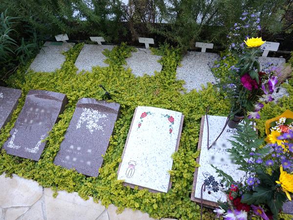 樹木葬のお墓