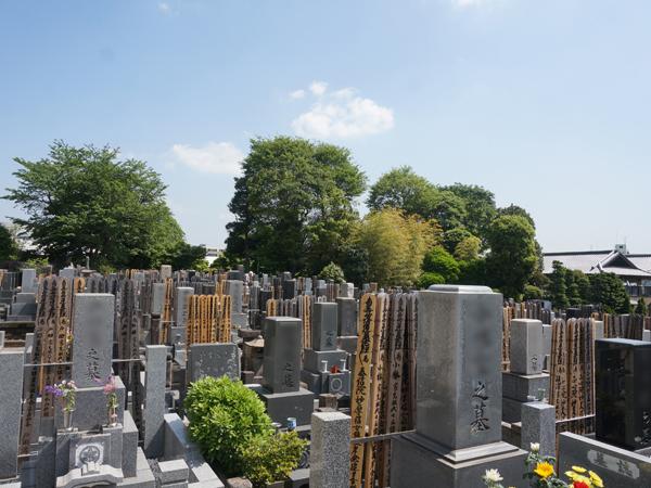 安詳寺の墓地