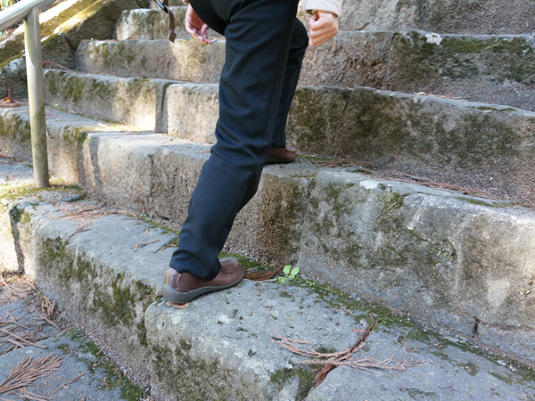 久遠寺の菩提梯