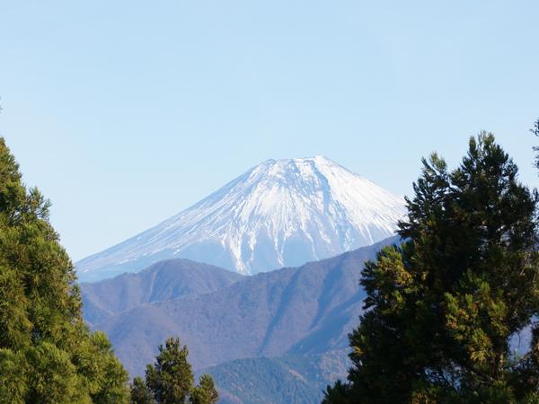 身延山から見える富士山