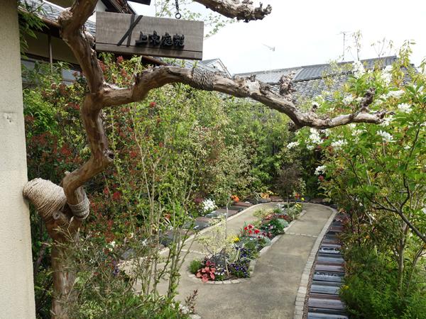 本昌寺の樹木葬
