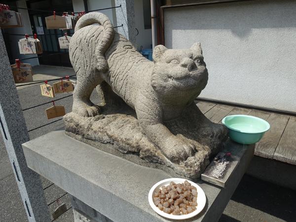 正傳寺の狛寅